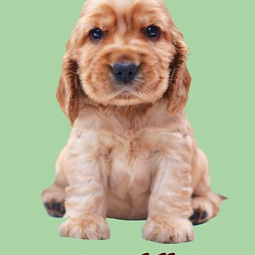 Adorable iCuddle Cocker Spaniel by Shana1065