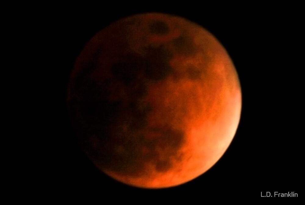 Eclipse by L.D. Franklin