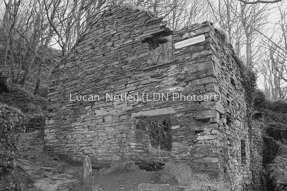 Trewethet Mill...... by Lucan  Netley (LDN Photoart)