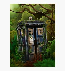 haunted public phone in the forest Photographic Print