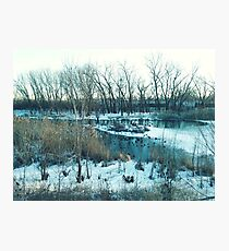 Winter Lake Scene with Geese Photographic Print