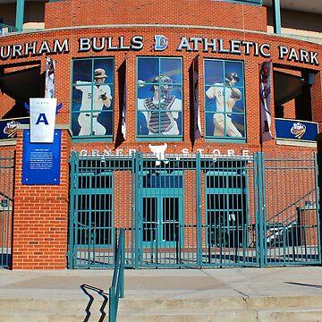 Baseball Stadium by Cynthia48