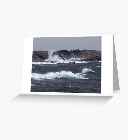 Wild Coast Greeting Card