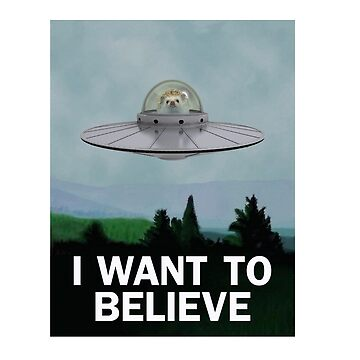 I Want To Believe Hedgehog UFO Conspiracy Poster  by PPricklepants