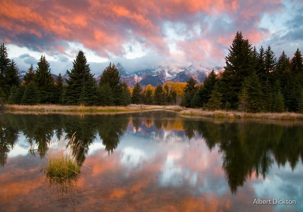 Teton Morning at Schwabachers Landing by Albert Dickson
