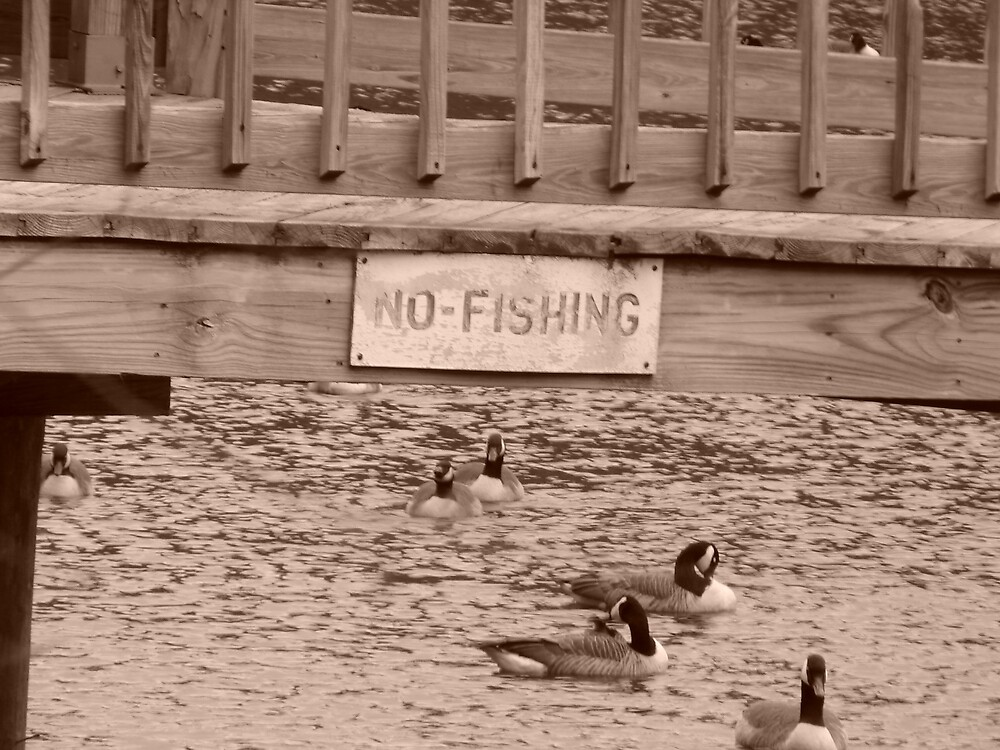 No Fishing.... by Glen Baker