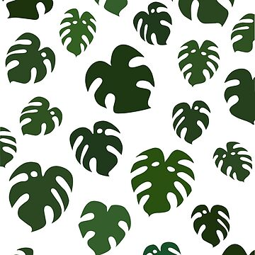 Tropical Monstera Leaves by fondco