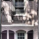 Behind the Windows by Cyn Piromalli