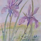 Irises (Watercolour Pencil Drawing) by lezvee