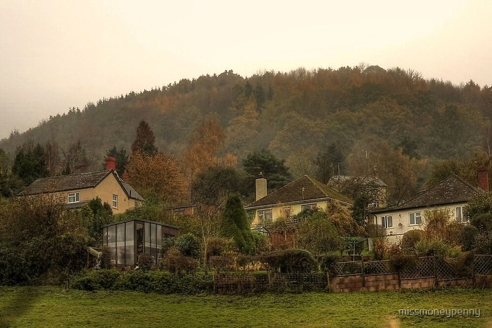 Little houses on the hill - Monmouth by missmoneypenny