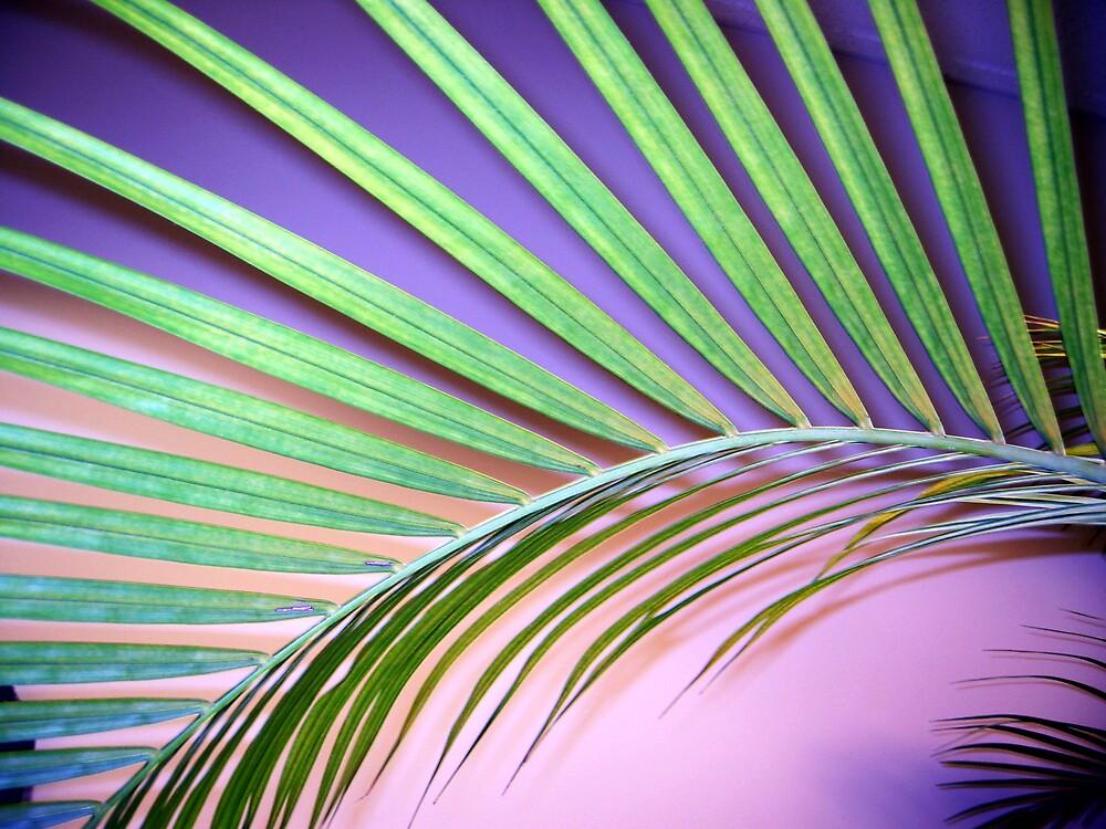 Rad palm by KatHardin
