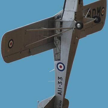 Plane & Simple -Auster VH-BDM (A11-33) by muz2142