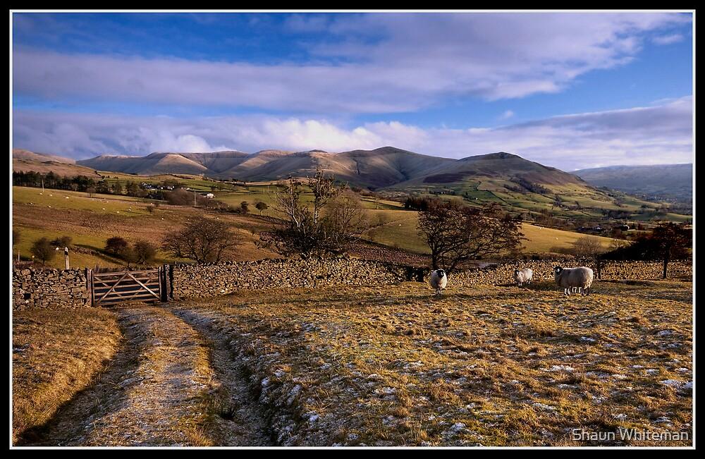 Yorkshire Dales views by Shaun Whiteman