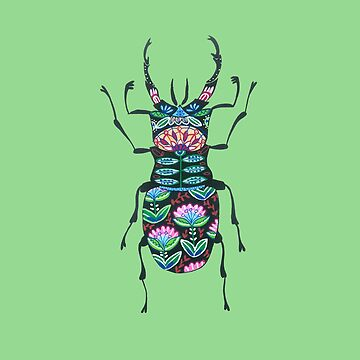 Cute Ornamental Insect by DoodlesAndStuff