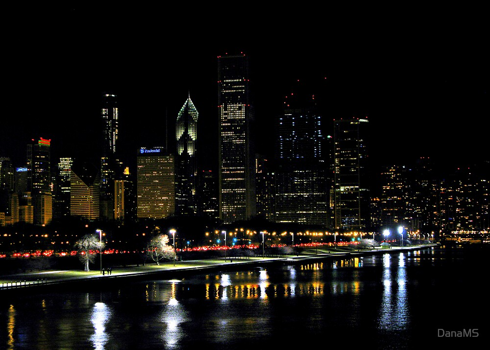 My Kind Of Town Chicago Is by DanaMS