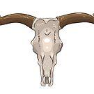 Skull of buffalo by Elsbet