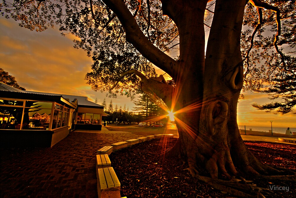 Golden Tree by Vincey