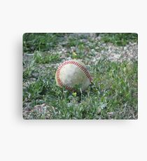 Baseball Lying in the Grass Canvas Print