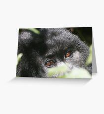 Gorilla Eyes Greeting Card