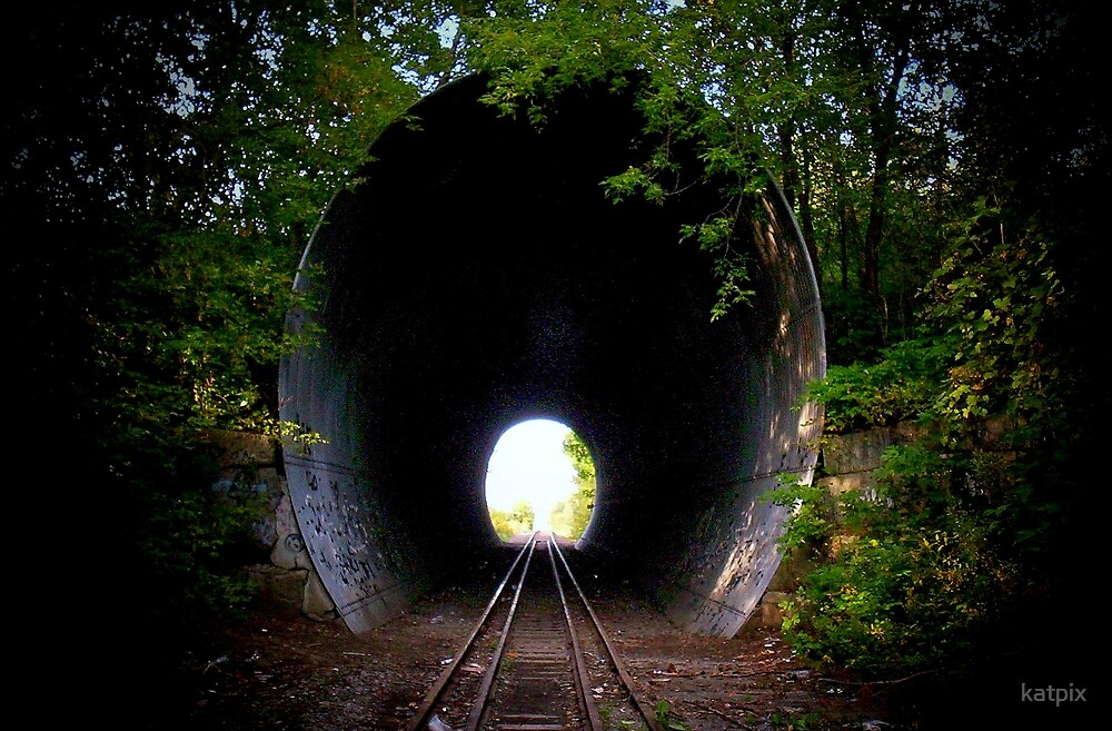 through the tunnel In the short story through the tunnel, doris lessing describes the adventure of jerry, a young english boy trying to swim through an underwater tunnel.