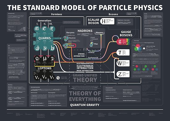 the standard model of particle physics von Florian  Winkler