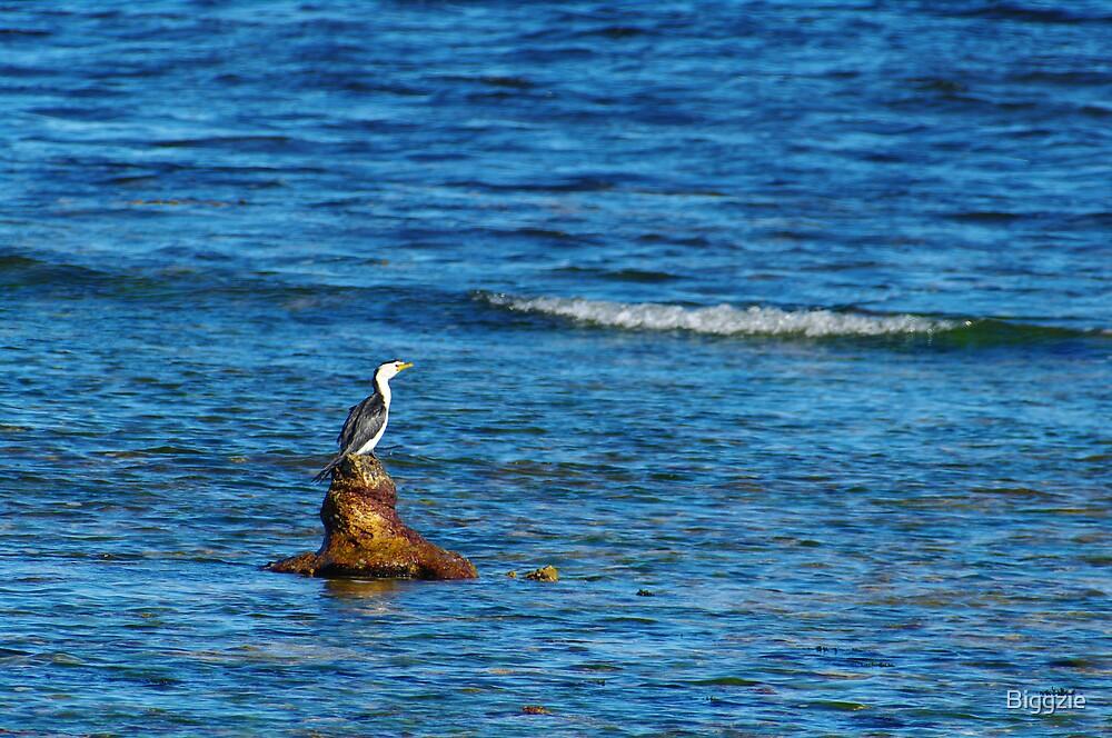 Great Fishing Spot by Biggzie