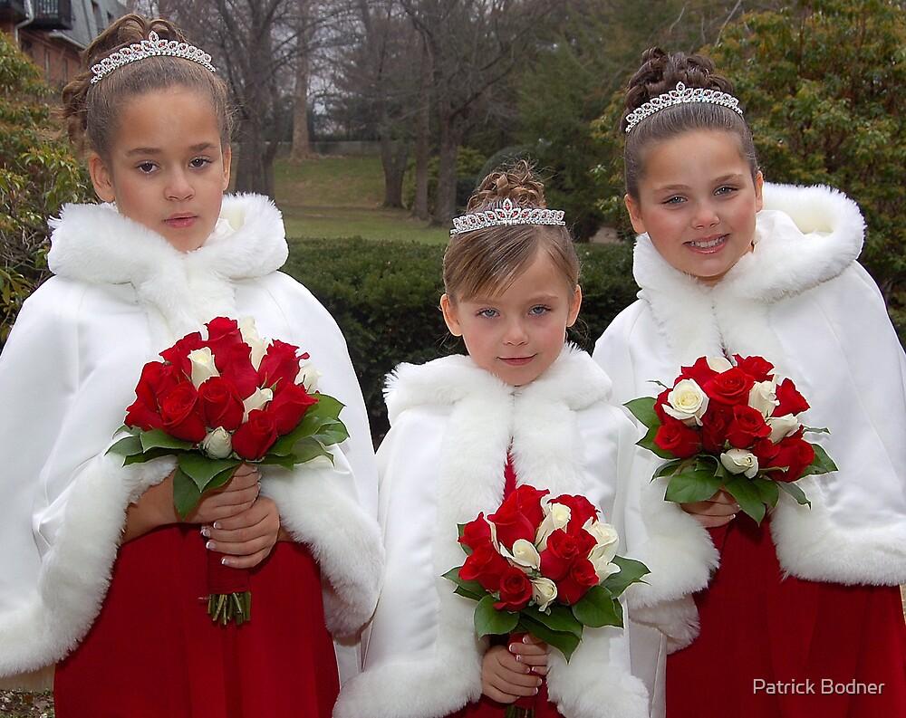 Three Lovely Bride's Maids by Patrick Bodner