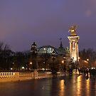 Evening walk by Elena Skvortsova