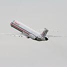 Passenger Jet by Karl R. Martin