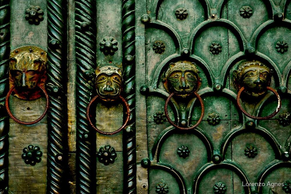 Venice Brass Door by zodezine