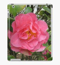 Precious Pink Summertime Camellia iPad Case/Skin