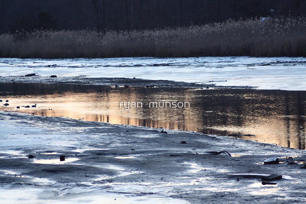 wetland by ryan  munson
