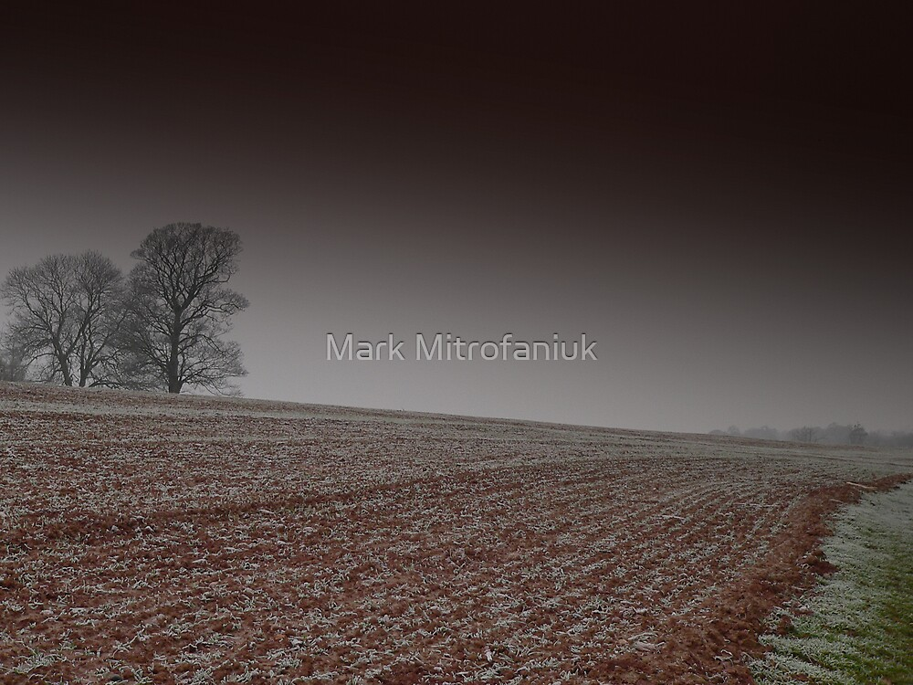 Bleak by Mark Mitrofaniuk