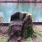 Have a Seat by Benedikt Amrhein