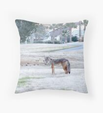 coyote Beauty ! Throw Pillow