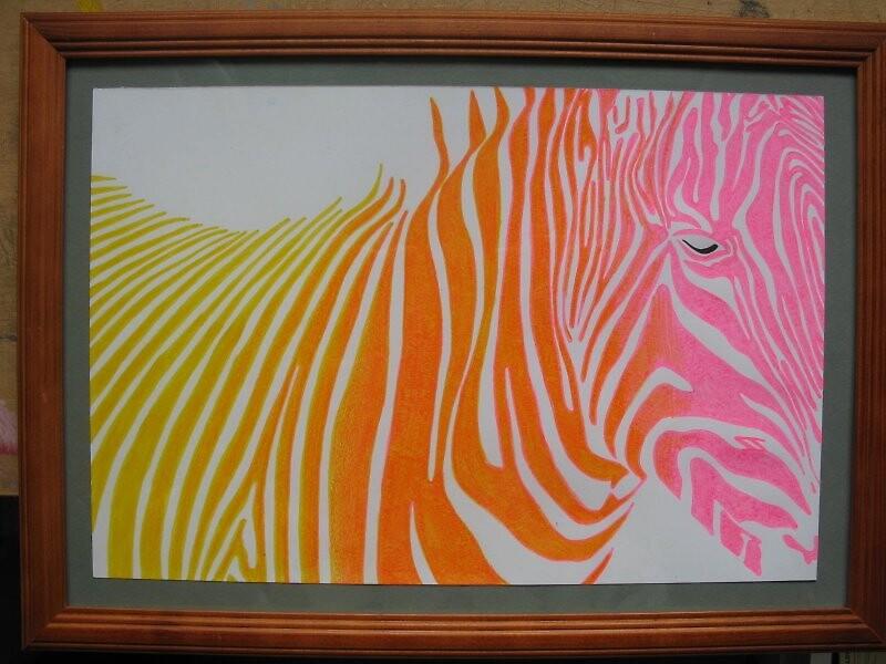 zebra by Siim Hanikat