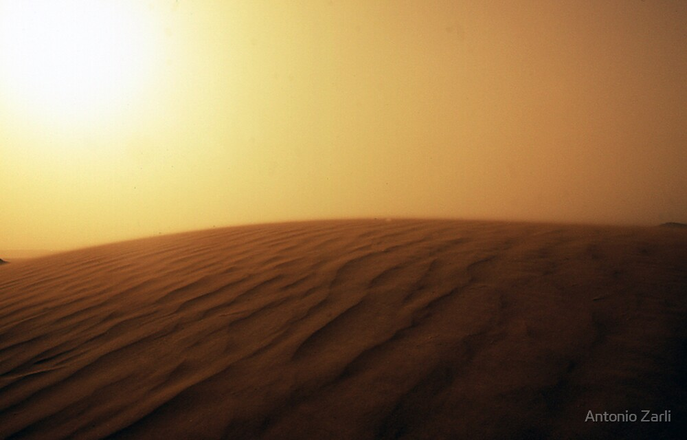 Sahara by Antonio Zarli