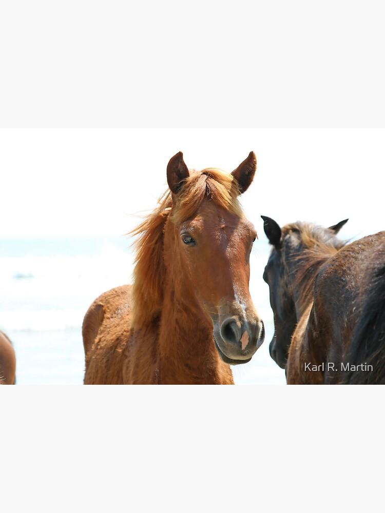 Wild Horses by SirEagle