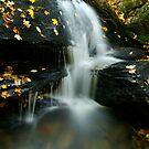 Northeast Waterfalls - Stephen Beattie Photography by Stephen Beattie