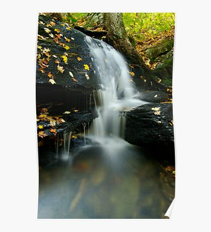 A Small Falls in Autumn Poster