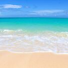 Tropical Beach by Southern  Departure