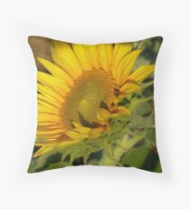 Journey to the Sun Throw Pillow