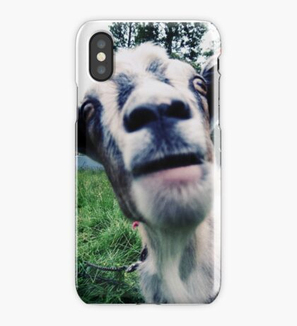 bah! iPhone Case