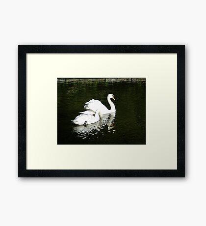 Come Along Dear, Don't Dawdle.. Framed Print