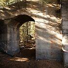Bankhead Ruins by Linda Bianic