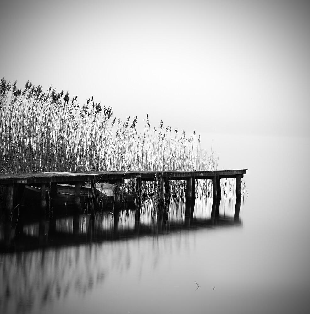 Morning by MartaLethKaack