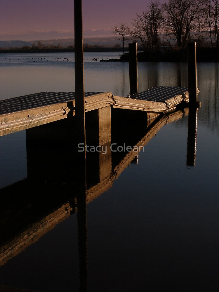 CLEAN REFLECTION by Stacy Colean