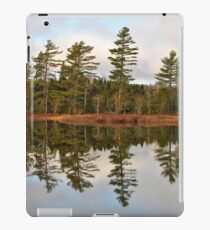 Autumn Reflector iPad Case/Skin