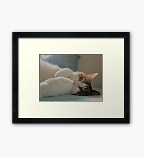 Furry Friend Framed Print