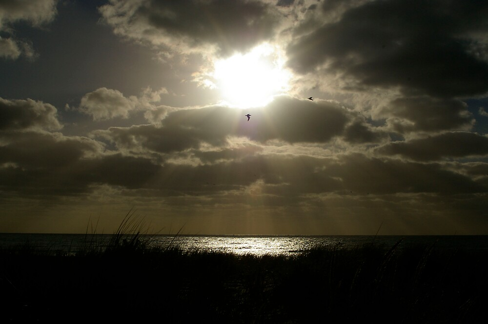 Southport Beach South Australia  by janfoster